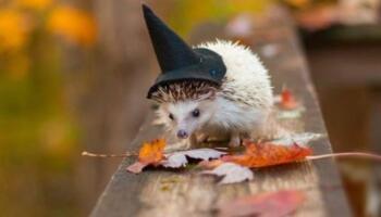 15+ фотодоказів того, що осінь — це час естетичної насолоди. Ах ця прекрасна золотиста осінь