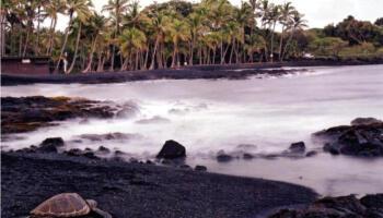 Чорний пляж Пуналу на Гаваях. Чим він цікавий для туристів?