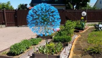 Казкова кульбка для прикраси вашого двору з найпростіших матеріалів
