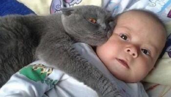 Кумедні фото дітей і тварин