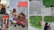 Бери і роби: бюджетні та практичні ідеї для вашого саду