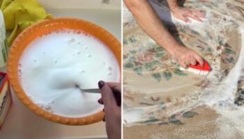 Ефективний засіб, який допоможе почистити килими в домашніх умовах